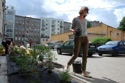 Projekt ogrodów społecznych