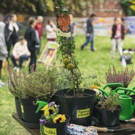 Ogroduwspomnienie_Ogrodemleczenie_sobota w ogrodzie_fot. Alicja Kielan (19)