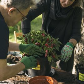 Ogroduwspomnienie_Ogrodemleczenie_sobota w ogrodzie_fot. Alicja Kielan (4)