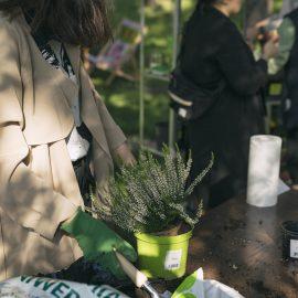 Ogroduwspomnienie_Ogrodemleczenie_sobota w ogrodzie_fot. Alicja Kielan (5)