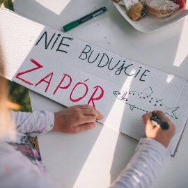 Sąsiadujemy z artystami_Ryba troć na Ołbinie_fot Jerzy Wypych (24)-min