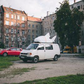 Sąsiadujemy z artystami_Ryba troć na Ołbinie_fot Jerzy Wypych (29)-min