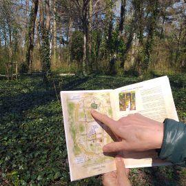 Widok na ręce trzymające otwartą broszurę. Osoba wskazuje palcem konkretne miejsce na mapiee znajdującej się w broszurze. Na dalszym planie widać drzewa rosnące w parku.