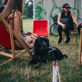 Pies przewodnik leży na trawie obok swojej właścicielki, która siedzi na leżaku. Przed nim znajduje się biała laska. Pies to czarny labrador.